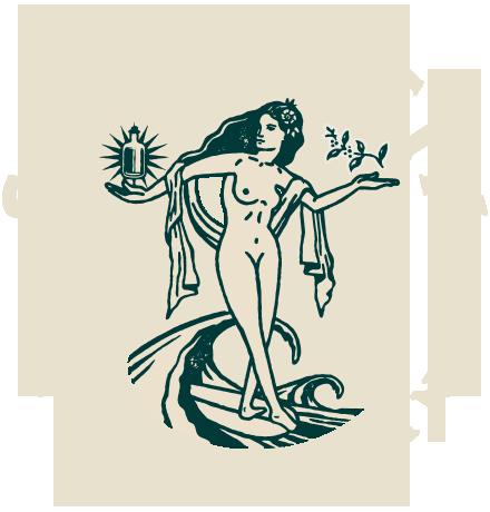 Single Fin Premium Gin